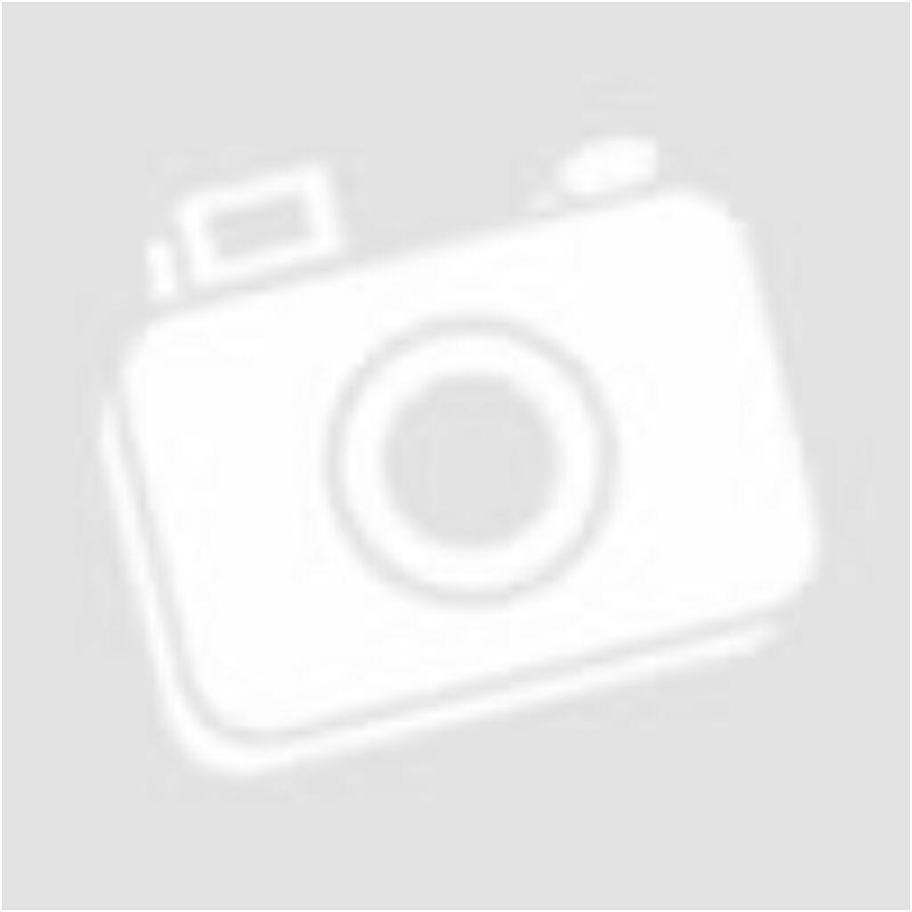 Pioneer Üveges harmonikaajtó Fehérkőris 281